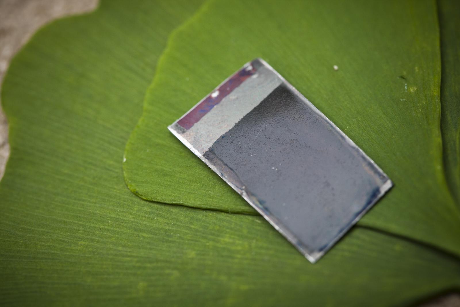 artificial leaf turns sunlight to liquid fuel