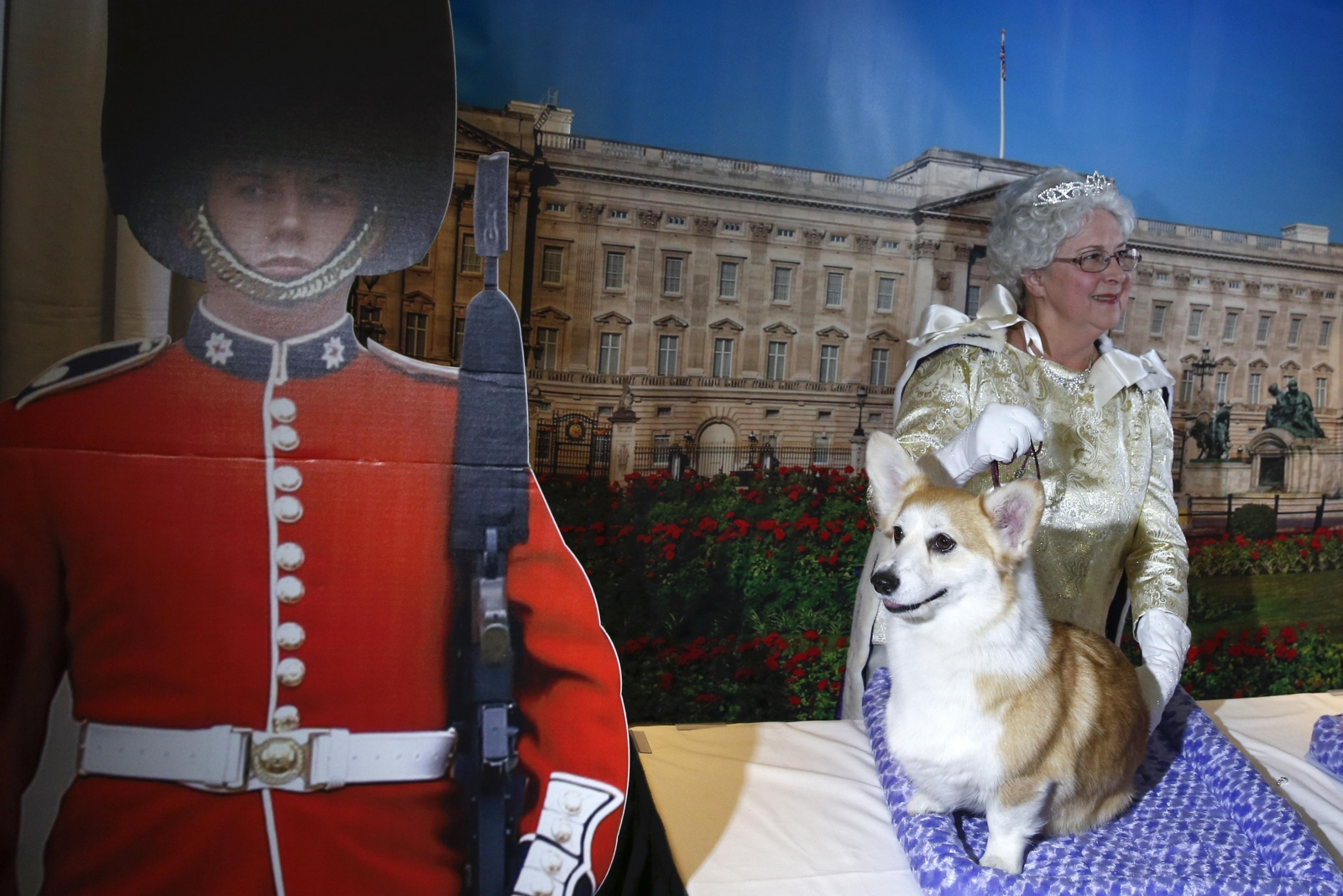 Meet the dogs in the 139th Westminster Dog Show
