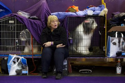 Westminster Kennel Club dog show 2015