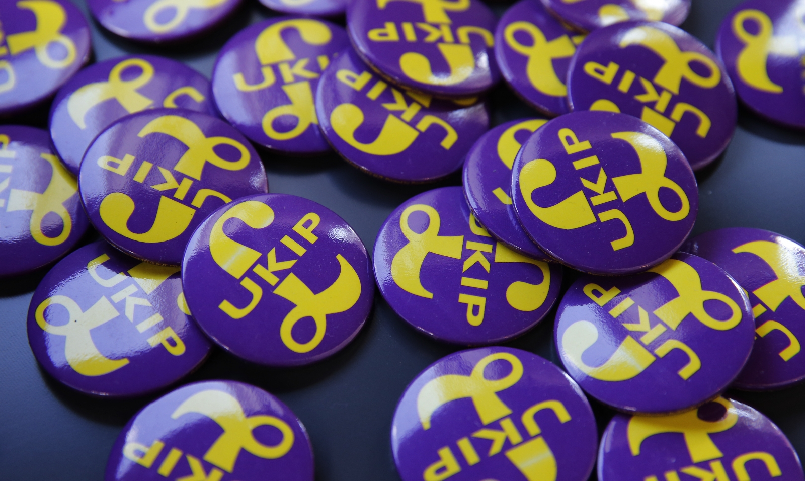Ukip badges