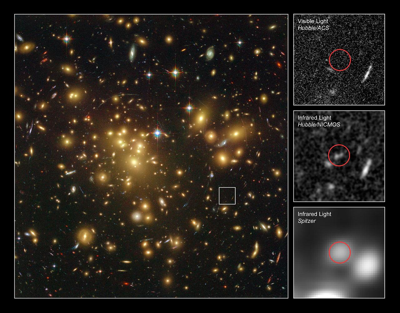 young dusty galaxy