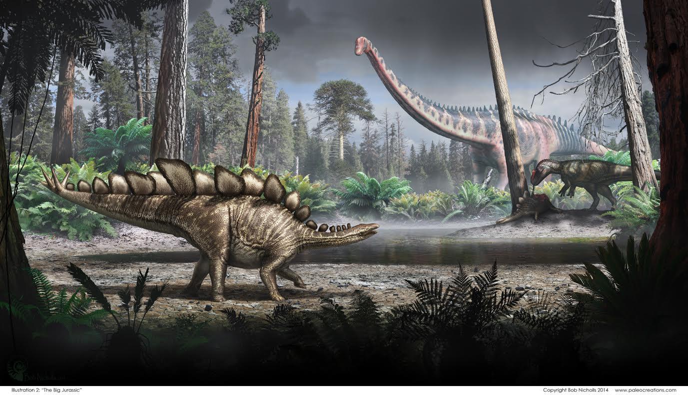 Sophie the Stegosaurus