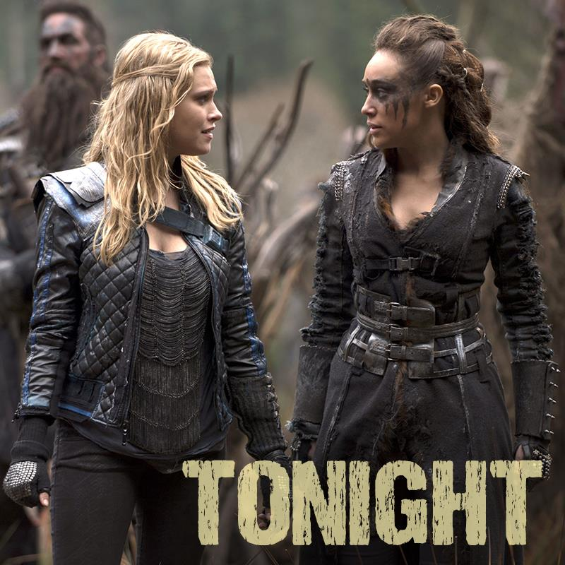 Watch The 100 Online