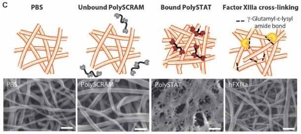 PolySTAT blood clot