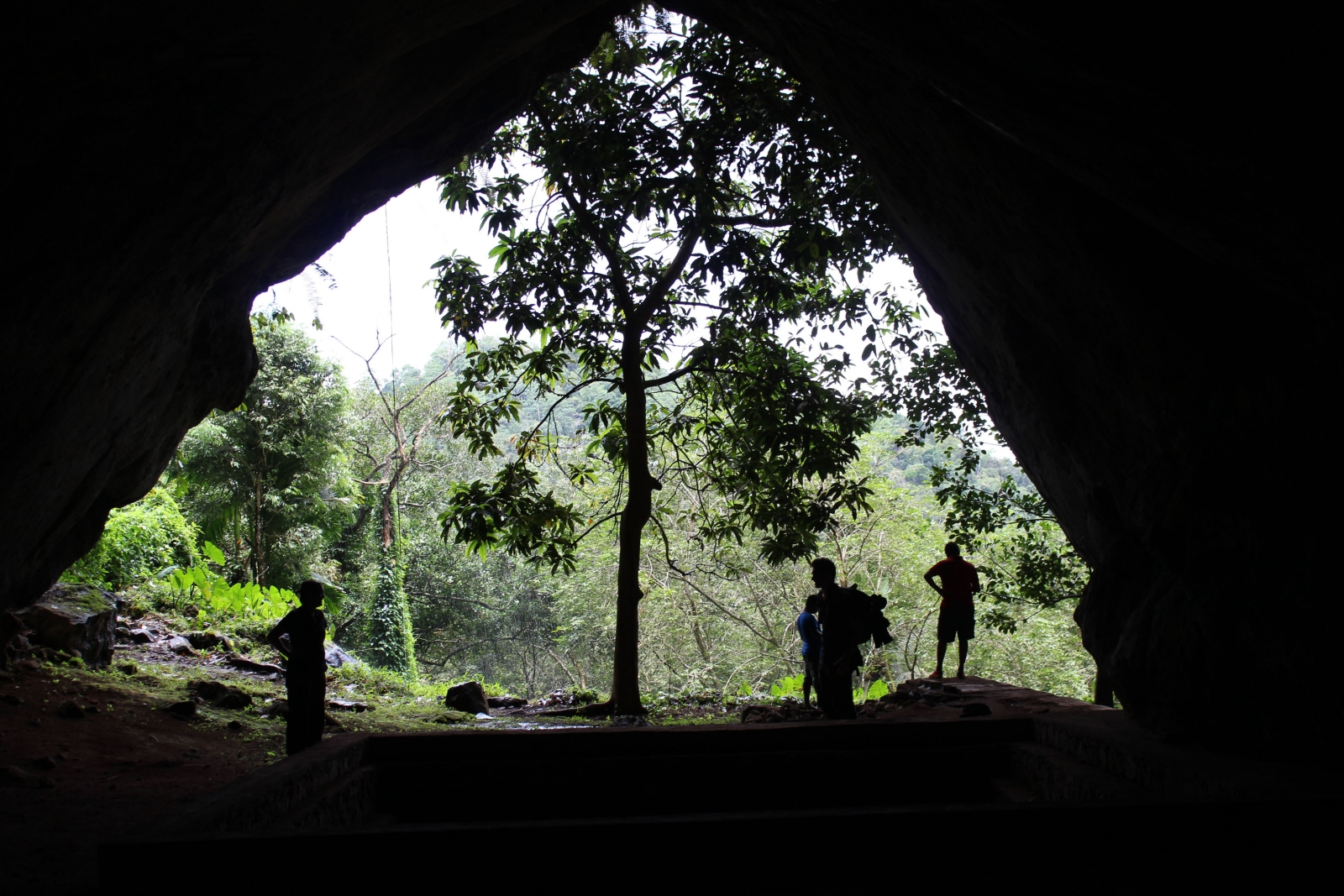 humans lived in rainforest