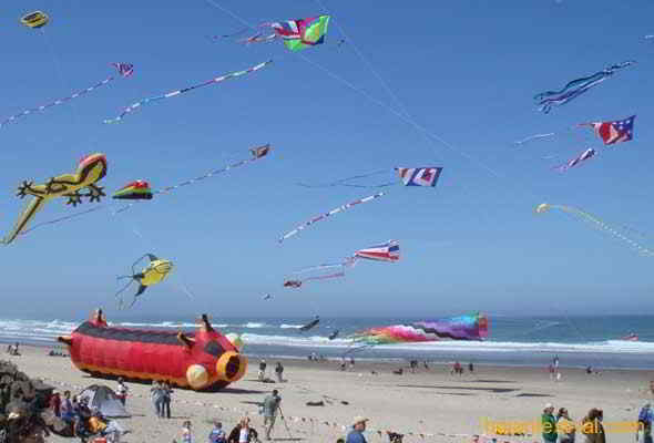 Kite festivals in Vietnam