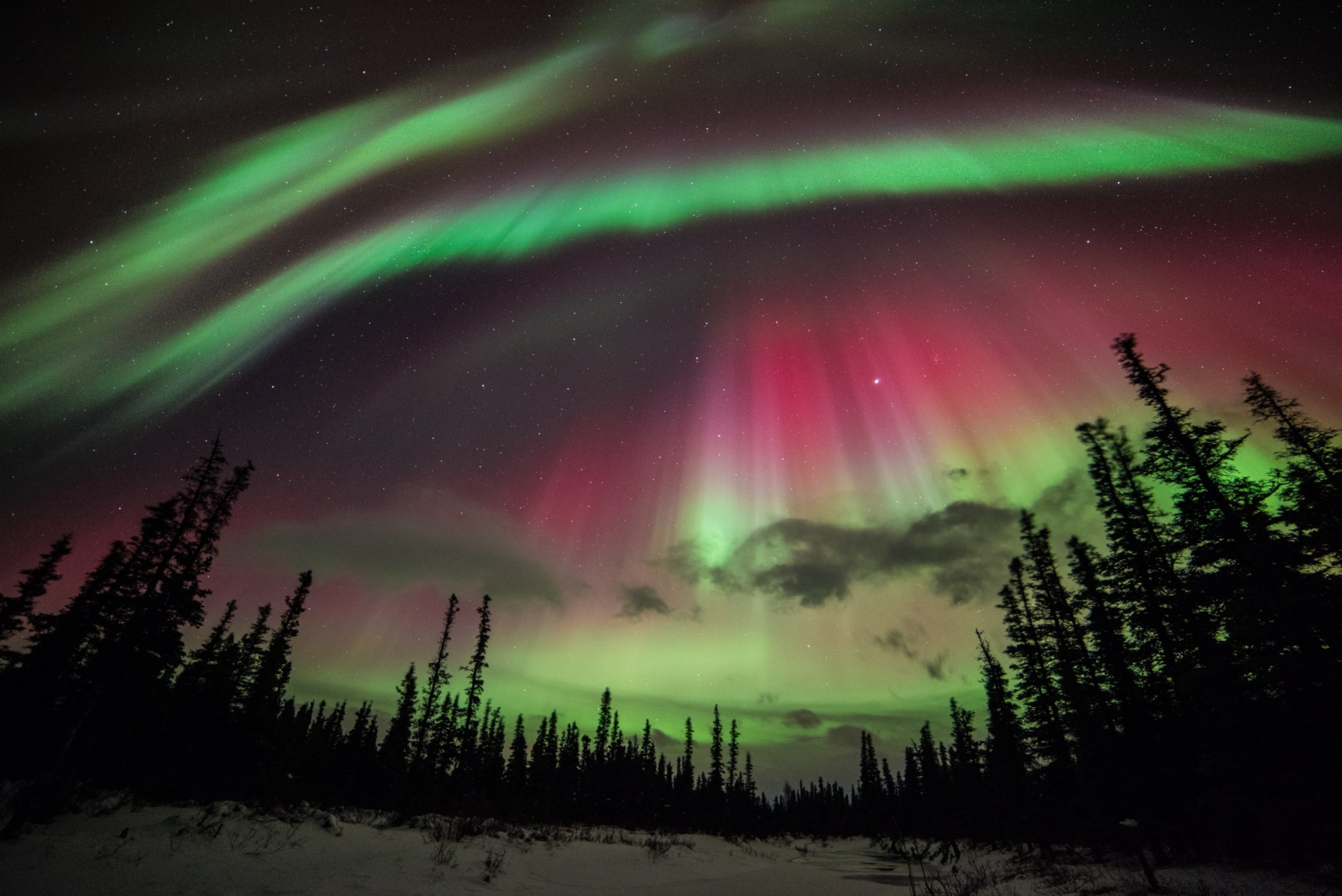 Aurora Borealis: Photos Of Northern Lights Over Alaska Following  Geomagnetic Storm Great Ideas