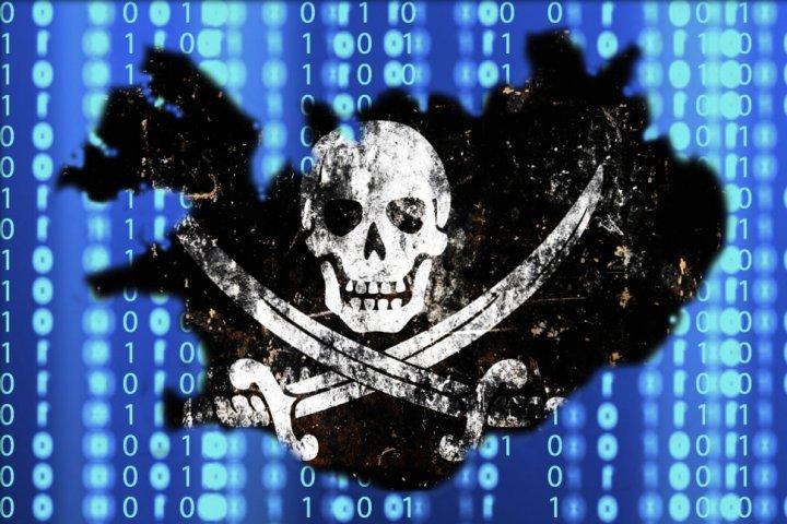 pirate party iceland birgitta Wikileaks