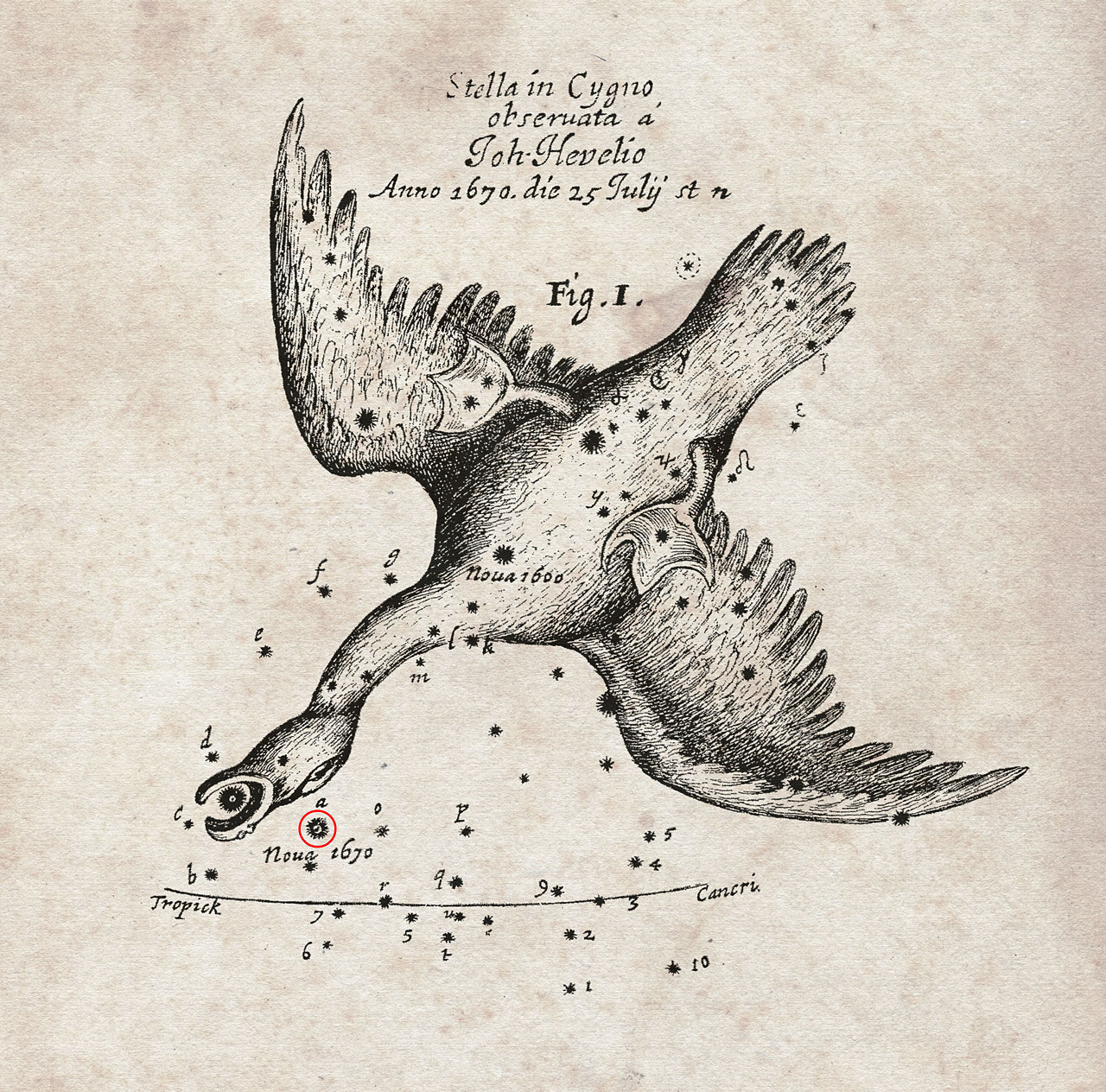 Nova Vulpeculae 1670