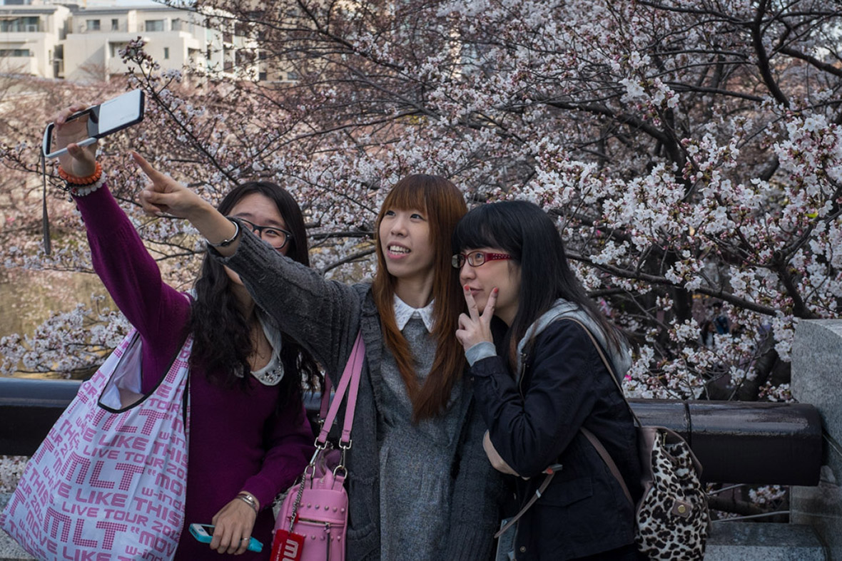 cherry blossom selfies japan