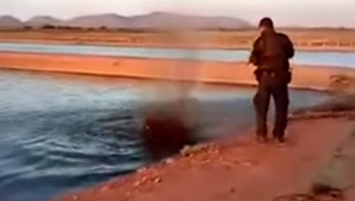 Mexican policeman kills crocodile