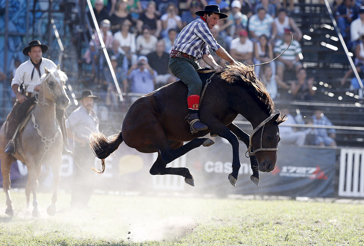 Criolla Week 2015 Gauchos Attempt To Stay On Bucking