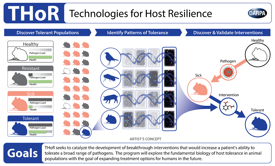 Darpa Thor antibiotics host resilience