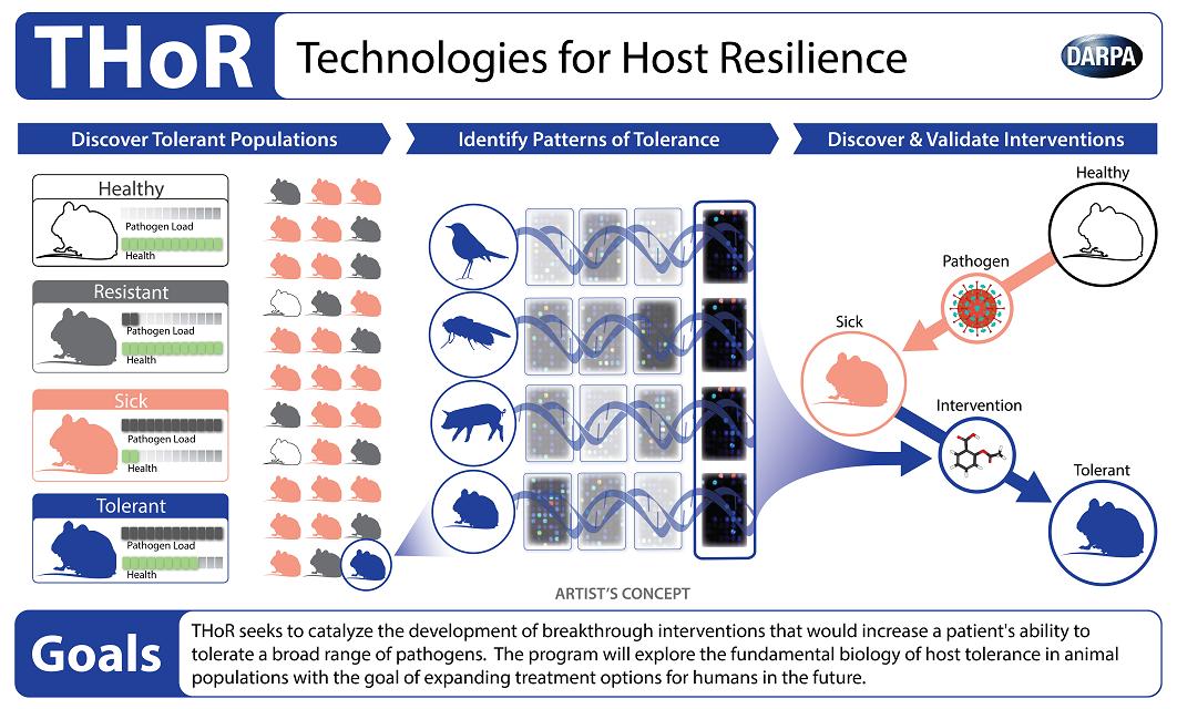 Darpa Thor antibiotics host resilience