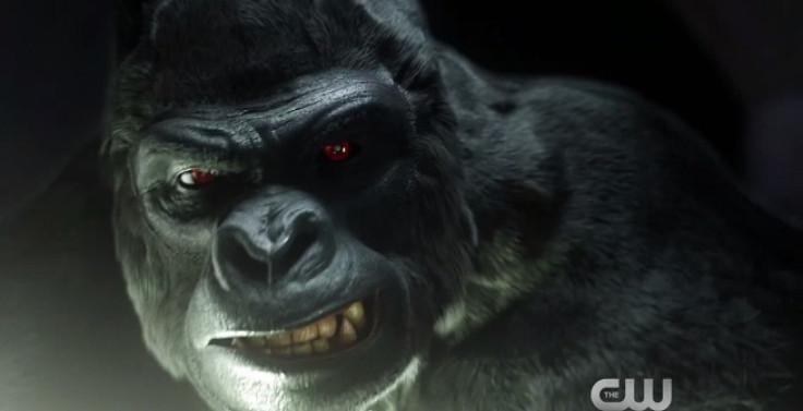 Gorilla Grodd in The Flash