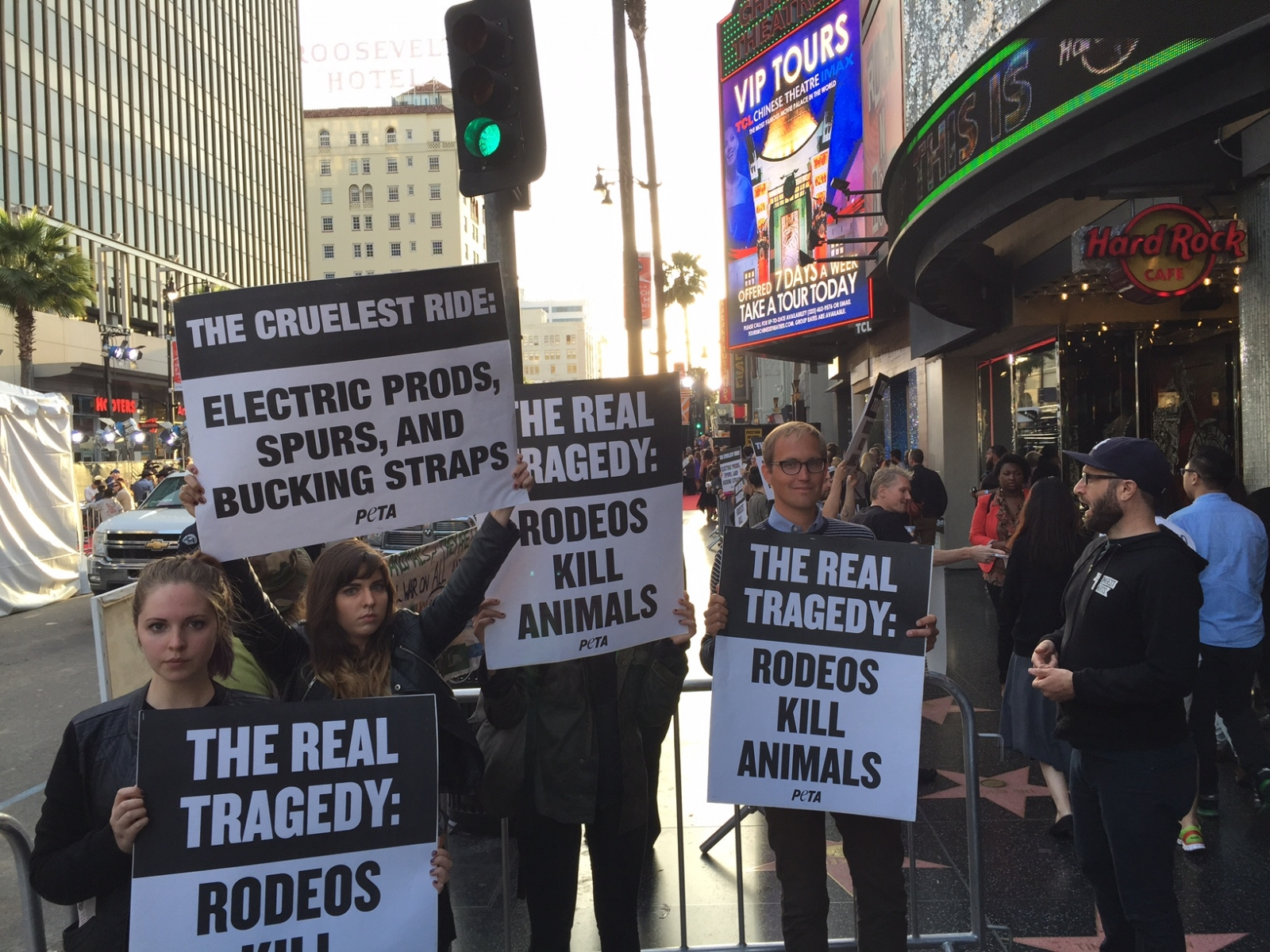 Animal rights' groups protest new rodeo romance The ...