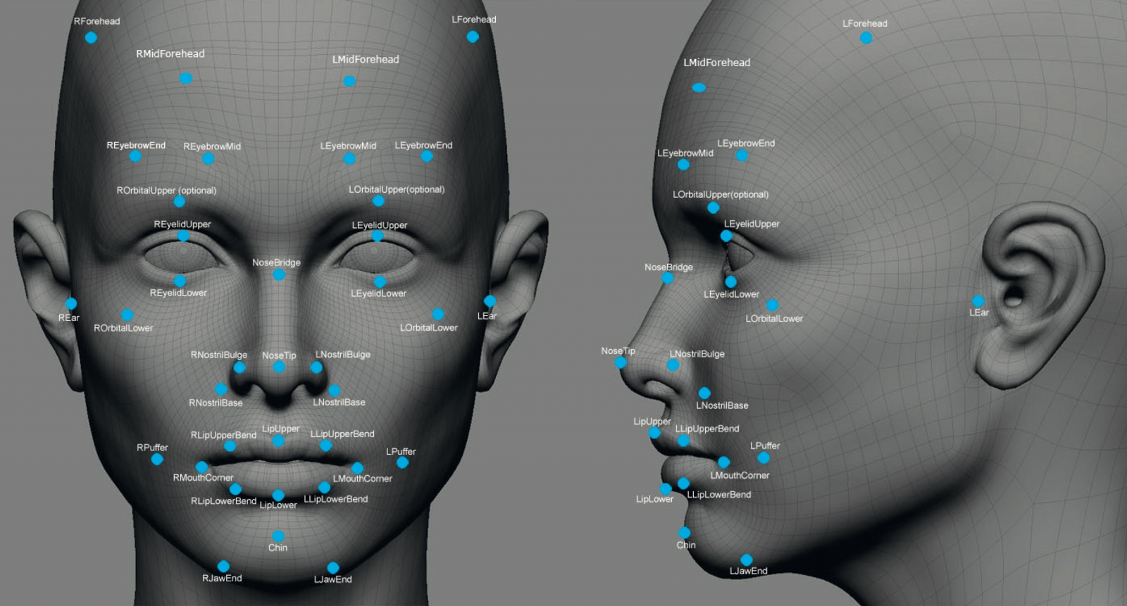 3D modelling map of facial recognition points