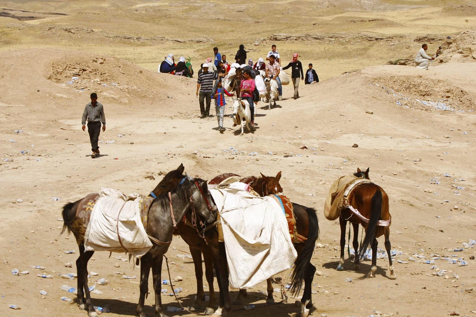 Syrian refugees Lebanon animals