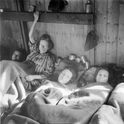 Bergen Belsen liberation