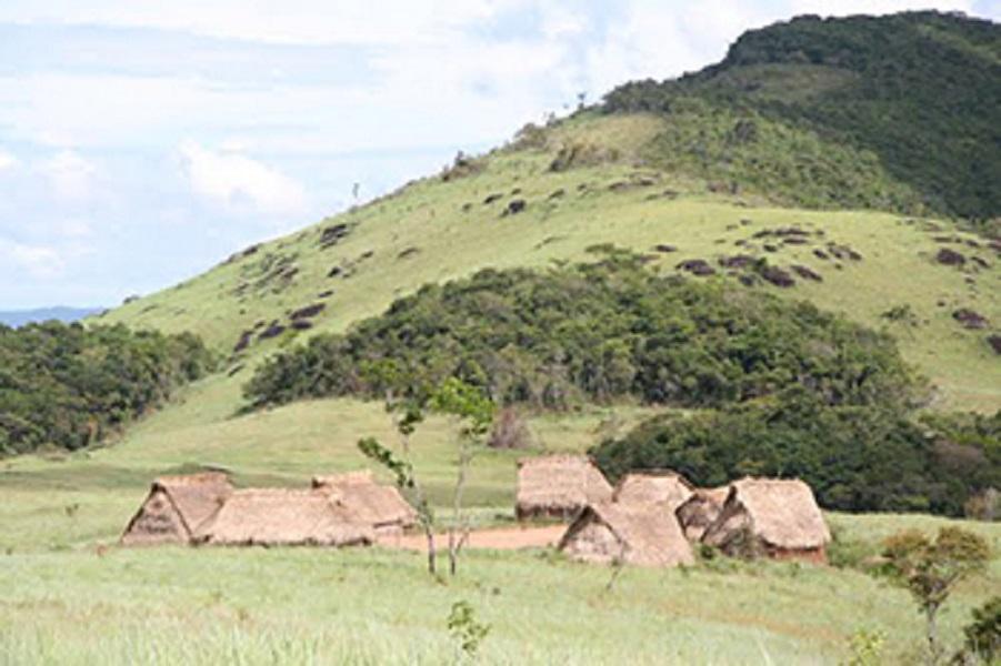 Yanomami antibiotic resistance