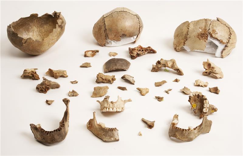 cannibal somerset cavemen