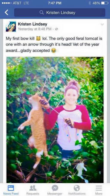 Kristen Lindsey dead cat arrow