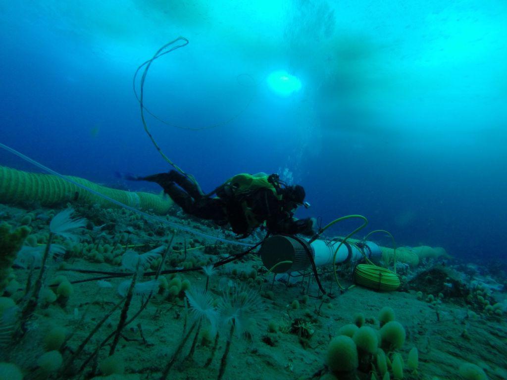Antarctic Seafloor Ocean Acidification Measured For First