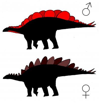 Stegosaurus mjosi