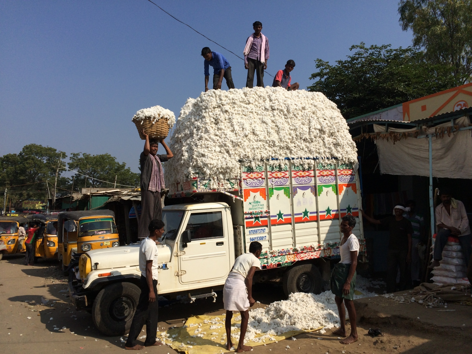 Loading cotton in Telengana