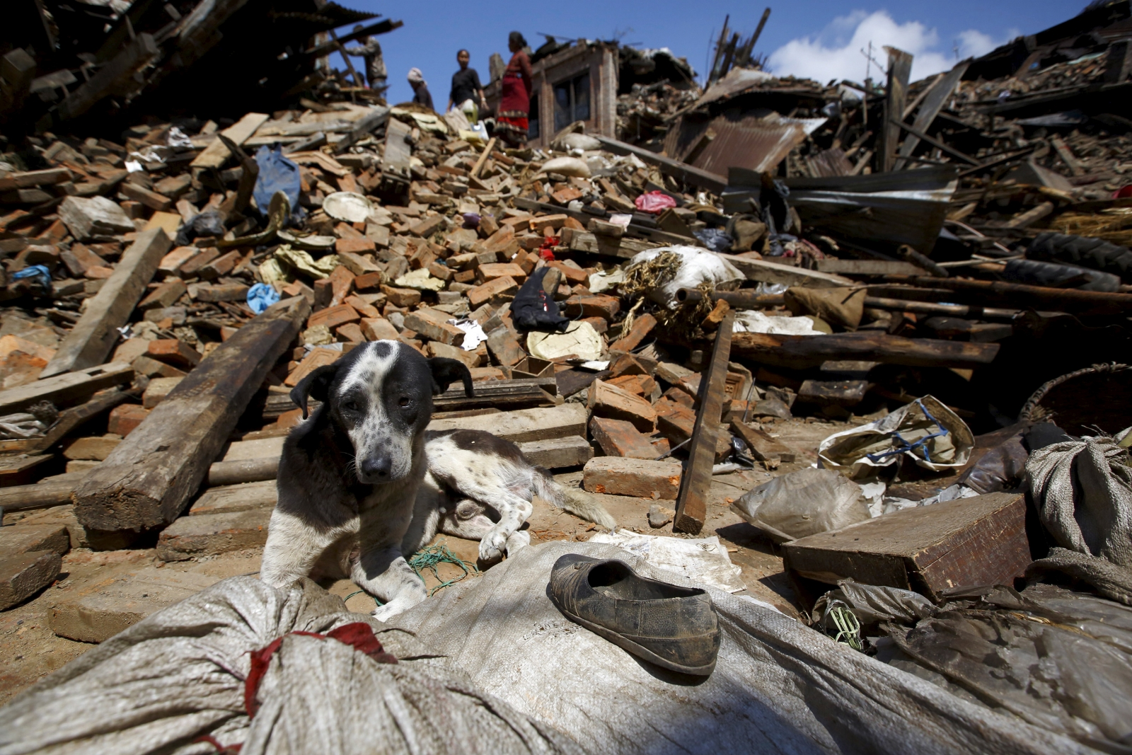 Predicting earthquakes: A mixed outcome, but improving ...