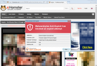 xhamster porn cyber attack malware