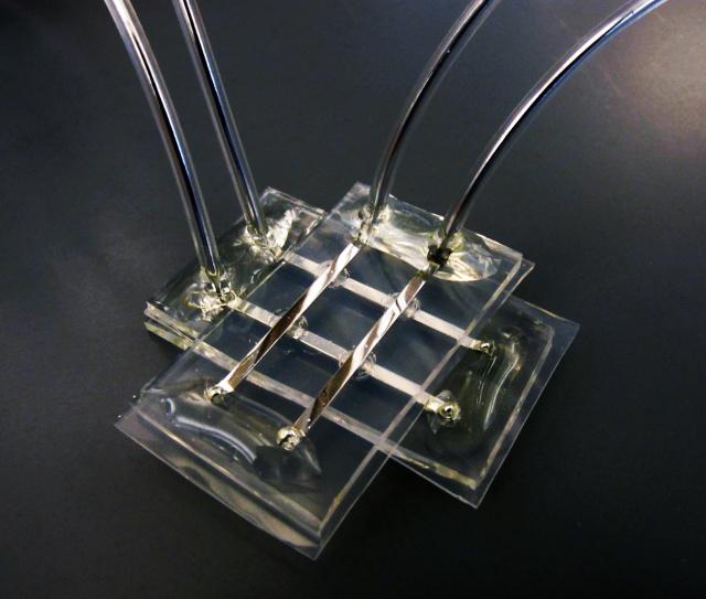 memristor neural network