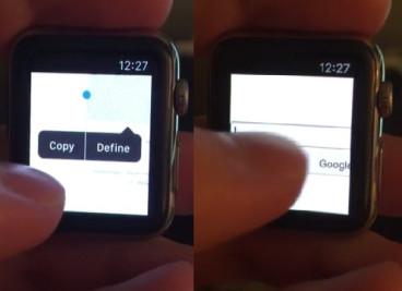 Apple Watch web browser