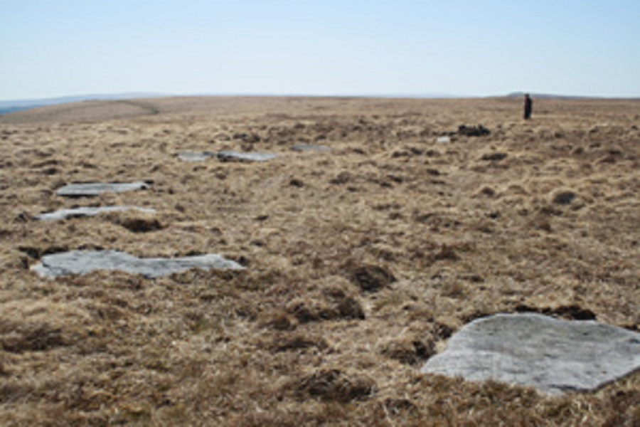stone circle dartmoor