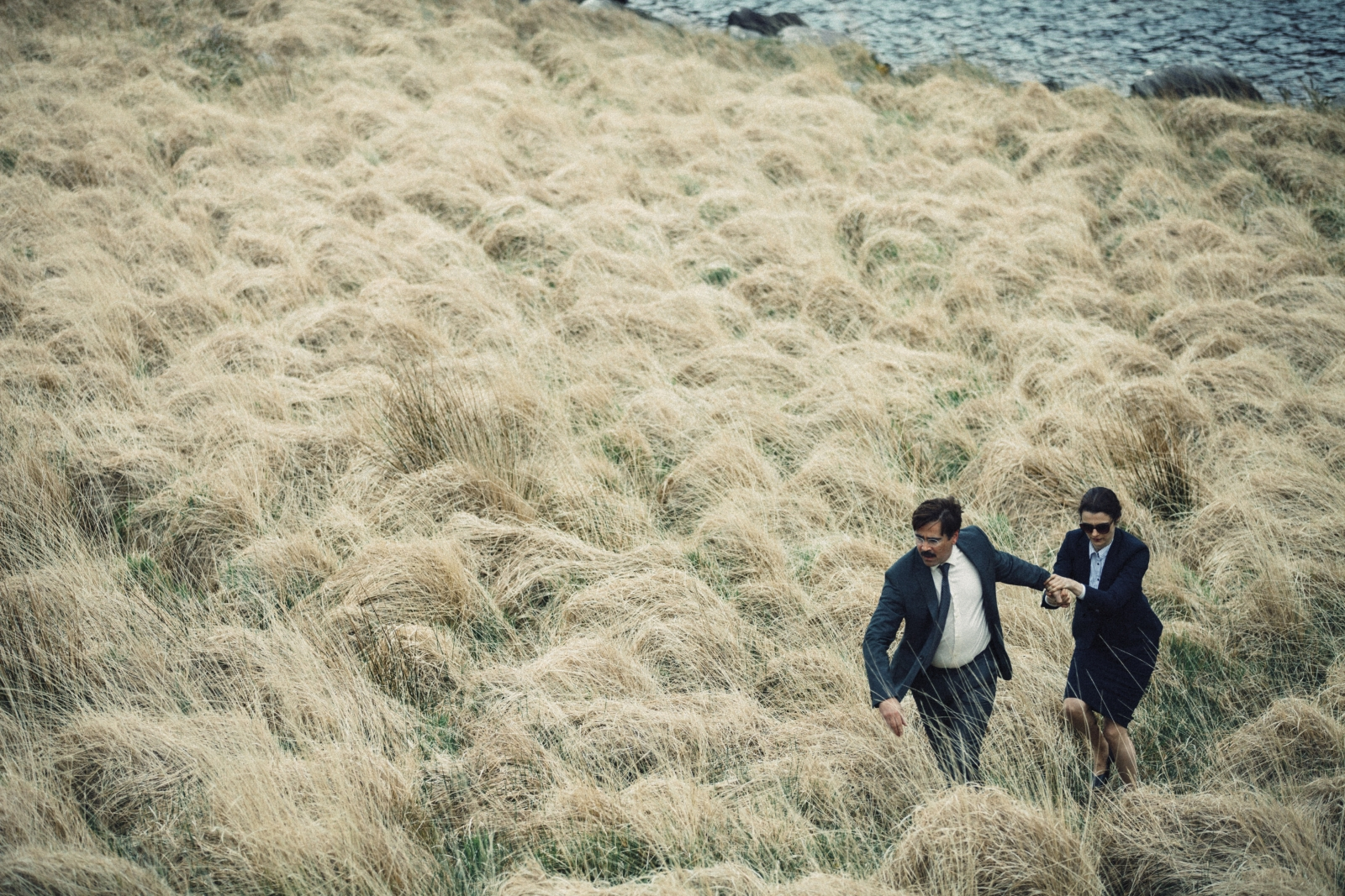 The Lobster movie still