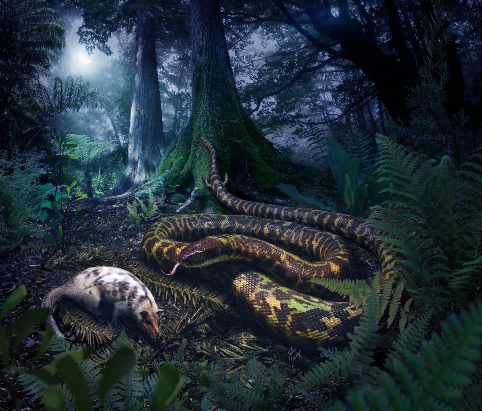 world's first snake