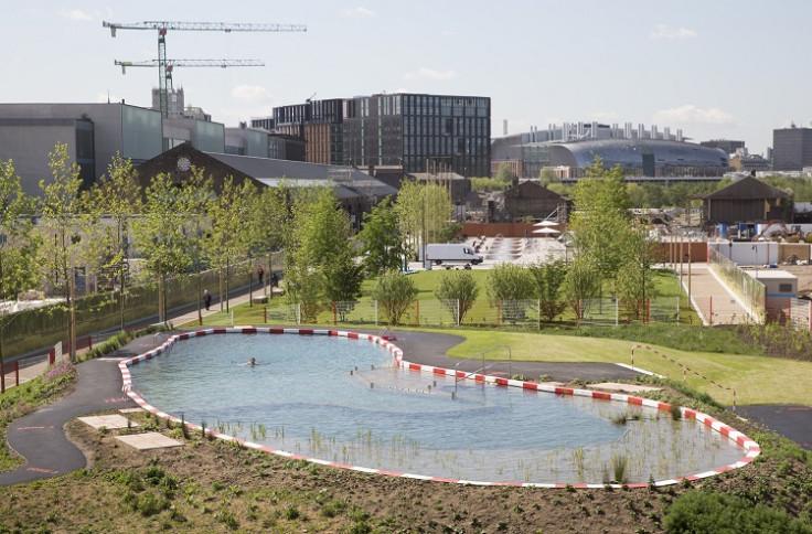 king's cross public swimming pool