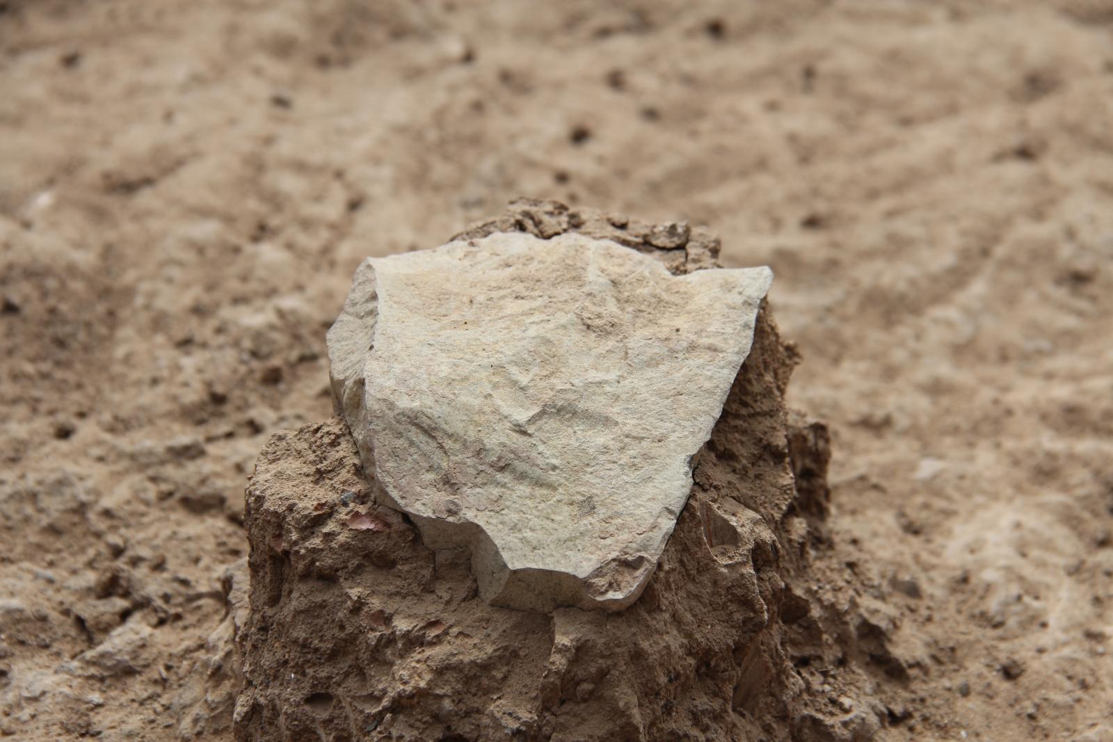 world's oldest stone tools