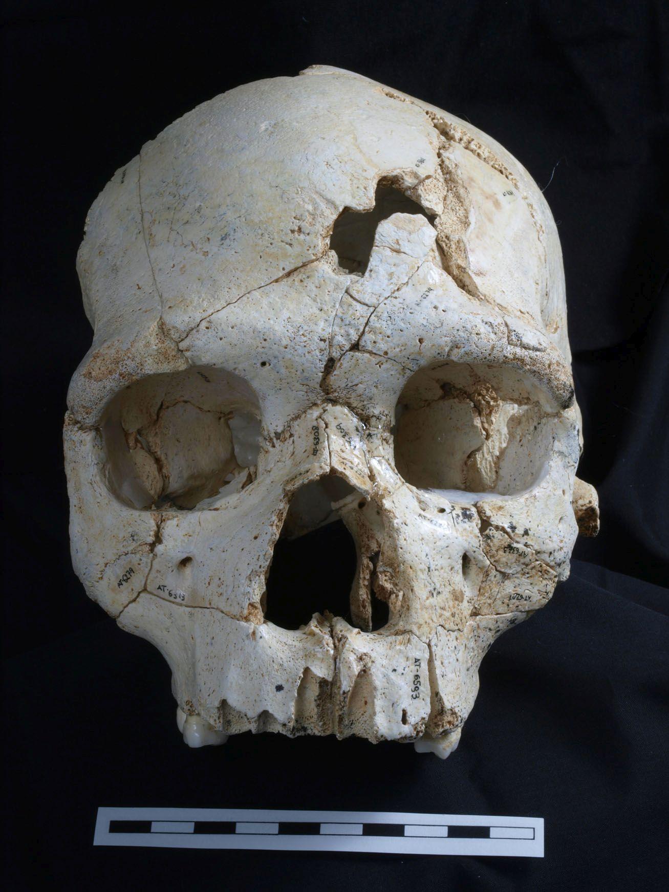 world's oldest murder victim