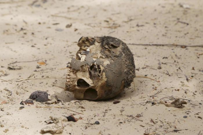 Boko Haram victim 2015