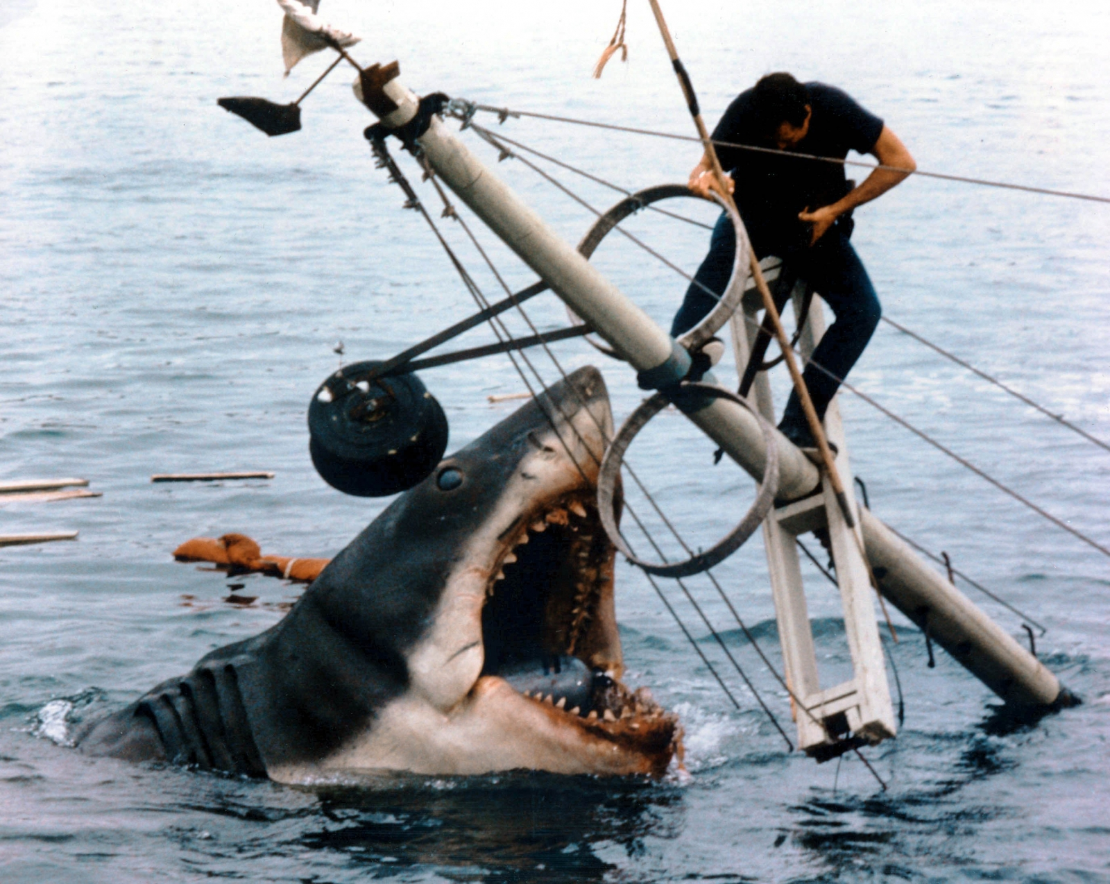 Jaws 40th Anniversary: 40 facts about Spielberg\'s infamous
