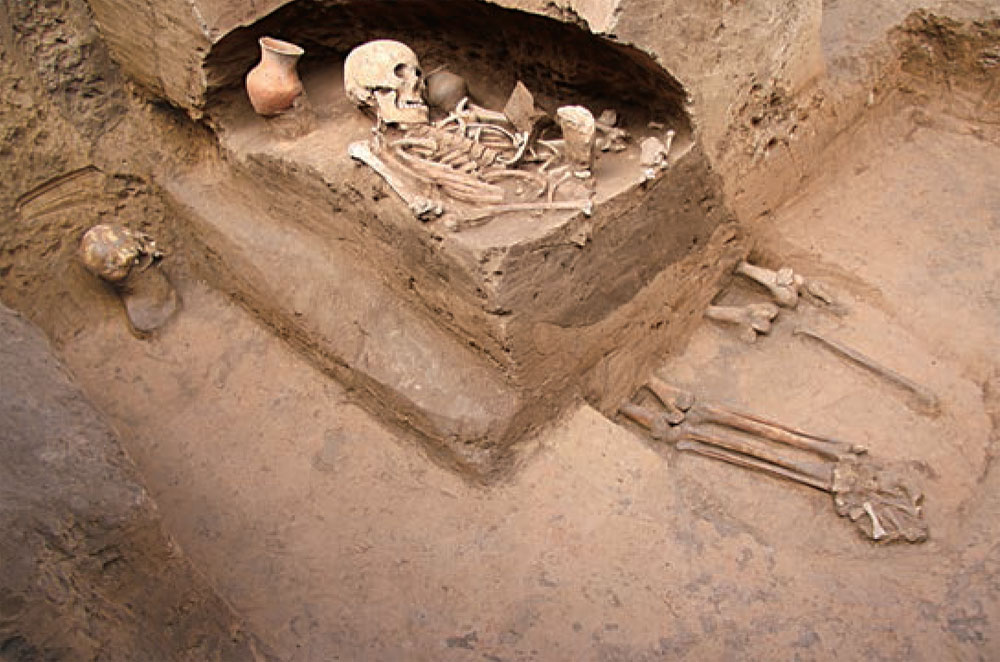 skeleton of female