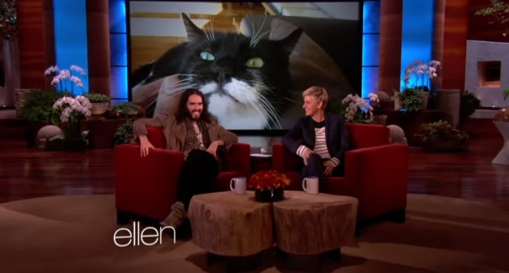 Russell Brand on The Ellen Show