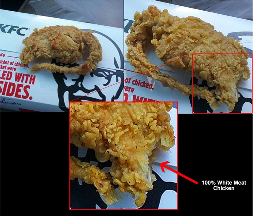 Deep Fried Rat: DNA Test Proves KFC Meal Was Chicken Not