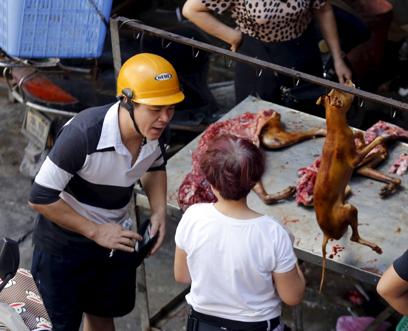 China dog meat festival