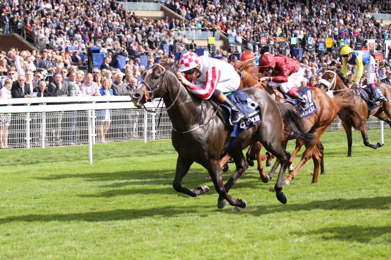 Nunthorpe Stakes, 2014