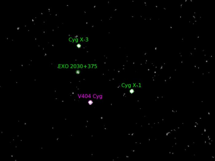 V404 Cygni system