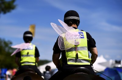 Glastonbury 2015 fairy wing police