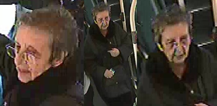 Westminster OAP bus assault