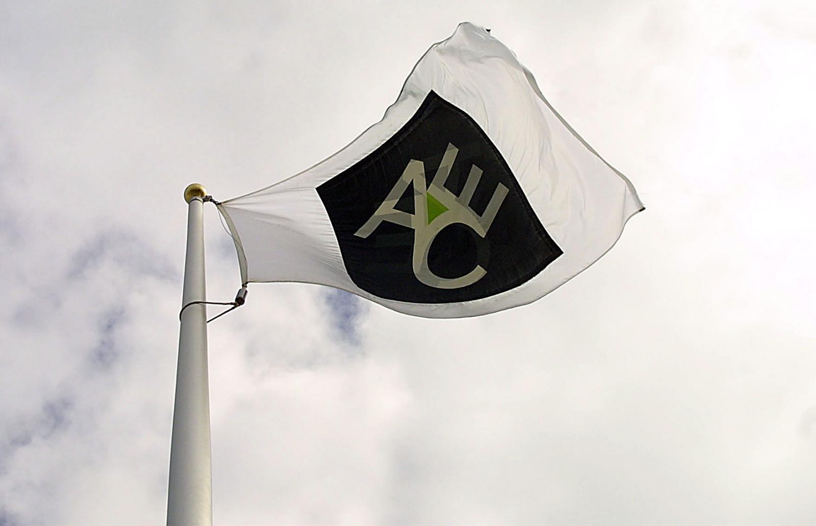 Flag with ACE logo